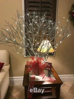 12 Large Premium Manzanita Branches- Fresh Cut 42-48 inches