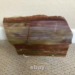 Beautiful 12 Arizona Rainbow Petrified Wood Slab Rip Cut Plank