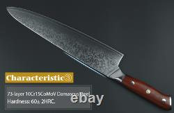 Chef Knife Knives 10 Inch Layers Japanese Damascus Steel Kitchen Sharp Wood Cut