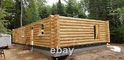 Log cabin log walls white cedar log 12'' diameter pre cut milled round big cedar