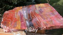 Sis 11 Glorious Arizona Arc-en-bois Pétrifié Slab Refente Planche Superbes